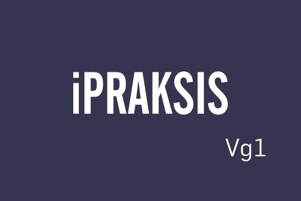 Logobilde iPRAKSIS Vg1